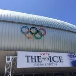 氷と光のコラボレーション!THE ICE(ザ・アイス)2014 長野公演。