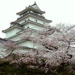 2015福島の桜②〜鶴ケ城〜