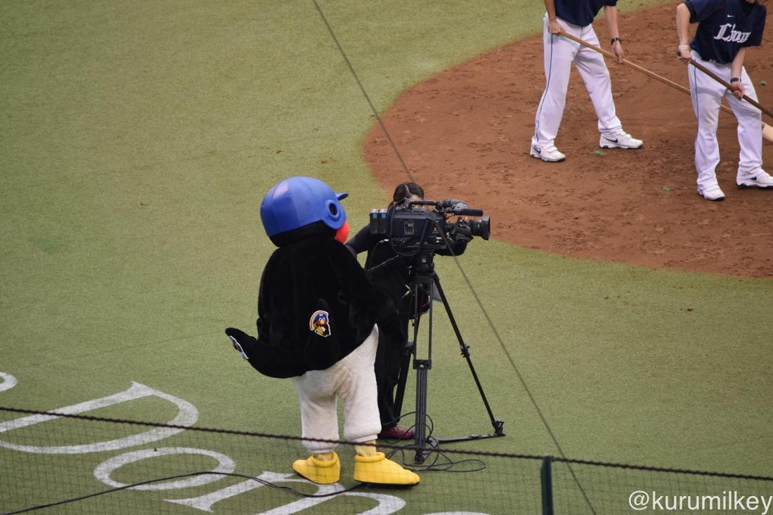 カメラマンさんにちょっかい