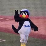 東京ヤクルトスワローズリーグ優勝!その時つば九郎は