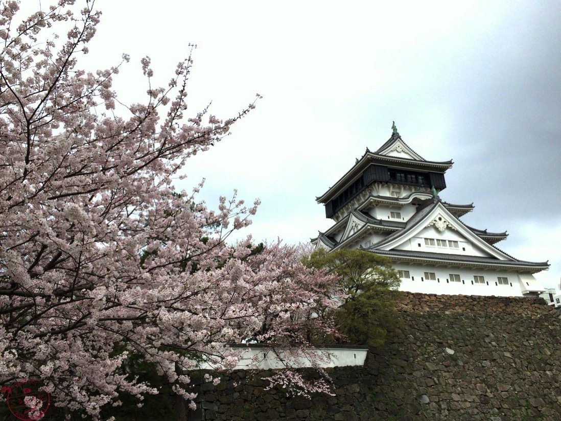 小倉城左から