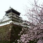 【福岡】2016年小倉城の桜