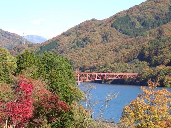 草木ダムの紅葉